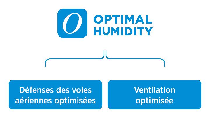 L'humidité optimale optimise les défenses des voies aériennes et la ventilation