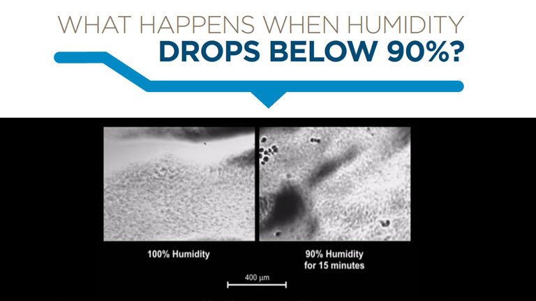 What happens when humidity drops below 90%?
