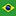 Portuguese - Brazil